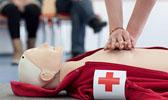 Foto: Übung der Herzmassage an einem Dummy - die Hände liegen übereinander gefaltet auf der Brust der Puppe. Dieses Foto ist gleichzeitig ein Link und führt Sie zu der Unterseite: Kurse.